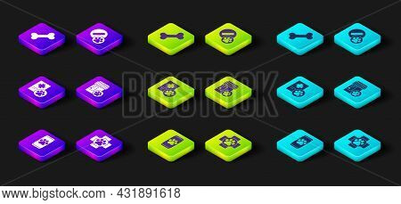 Set Veterinary Clinic, Clinical Record Pet, Dog Medicine Bottle, Pill And Bone Icon. Vector