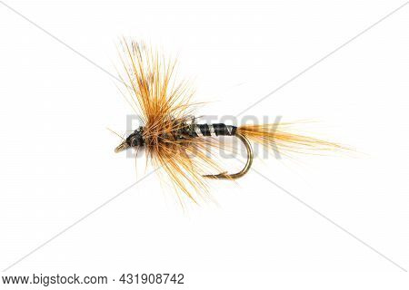 Macro Shot Colorful Fishing Fly Isolated On A White Background. Hand Made Fly Fishing Flies. Fluffy