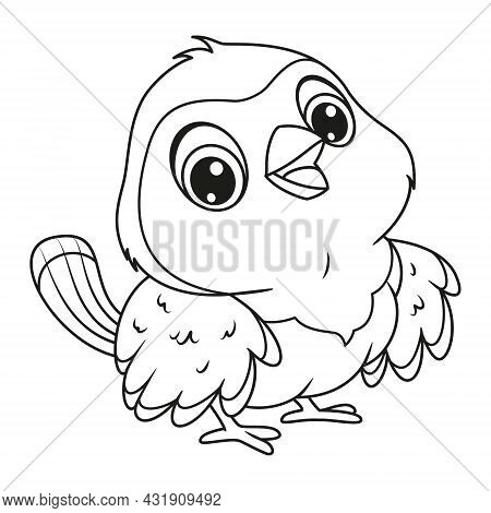 Red Robin Coloring Page. Outline Cartoon Vector Illustration