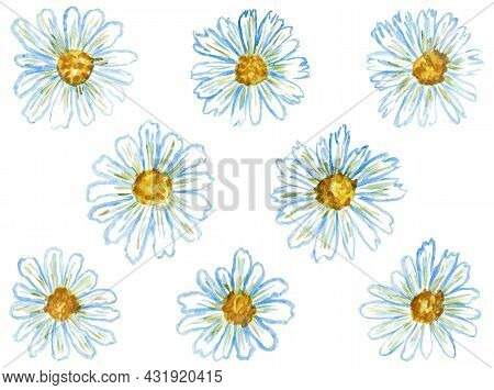 Vector Set Of Hand-drawn Daisies Stylized As Watercolor. Simple Floral Seamless Pattern