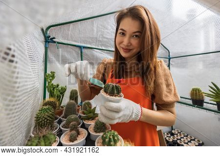 Woman Wearing Apron Doing Relax Hobby At Home Garden, Working In Mini Greenhouse By Adding Stone Fla