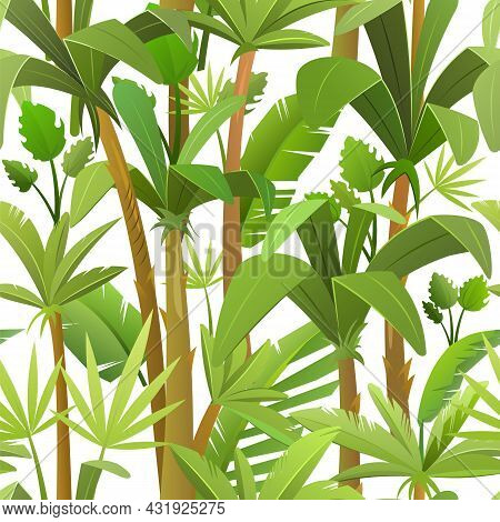 Beautiful Tropical Background With Jungle Leaves. Thickets With Palms In Cartoon Style. Isolated On