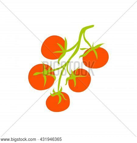 Sprig With Tomatoes Isolated. Cartoon Vector Illustration Of Red Tomatoes On A Green Branch On A Whi
