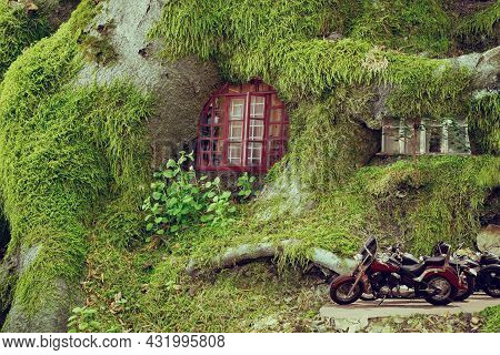 A Wild Fabulous Dwelling With A Tree House Covered In Moss. Life In A Fairy Forest