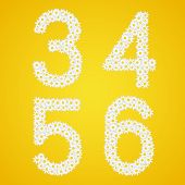 3, 4, 5 and 6 figures composed from daisy flowers. poster