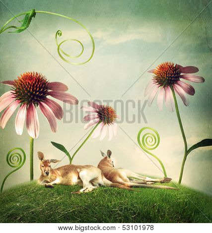 Kangaroo Couples Napping Under Flowers