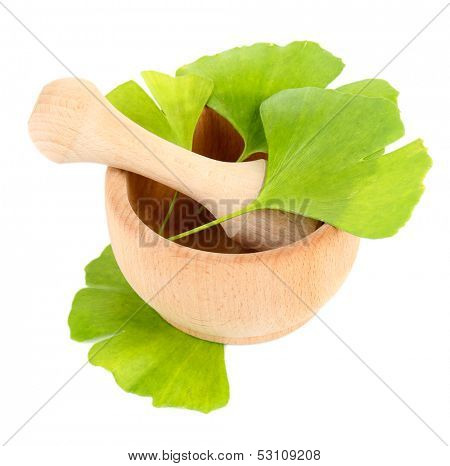 Ginkgo biloba leaves in mortar isolated on white