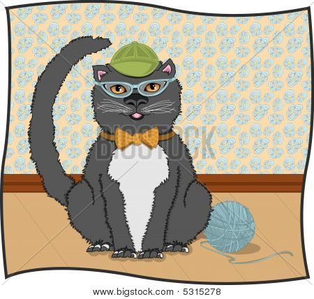 Cateye Kitty