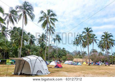 Tropical Campsite