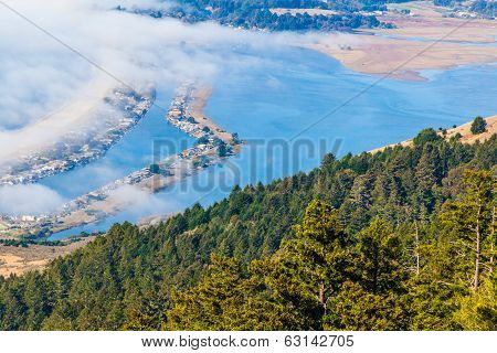 Blue Water And Fog