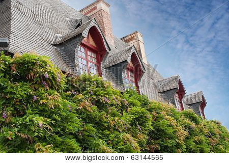 Element Of Old Garret Roof And Beautiful Flowers
