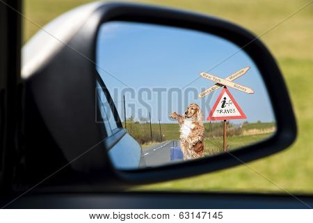 A holiday trip image seen in the mirror of a car poster