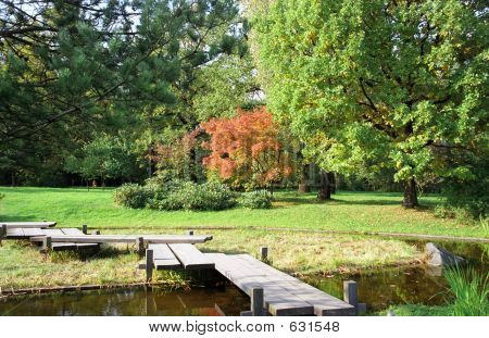 Garden. Fall