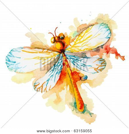 Orange Watercolor Dragonfly
