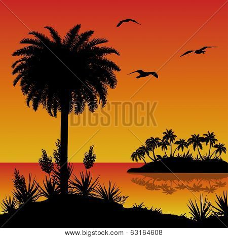 Tropical island, palms, flowers and birds