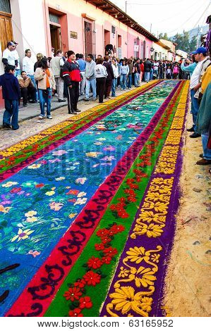 Floral Holy Week Carpet, Antigua, Guatemala