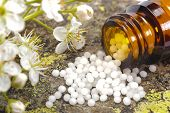alternative medicine and homeopathy with herbal pills poster