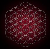 Flower of life, Sacred Geometry, Symbol harmony and balance poster