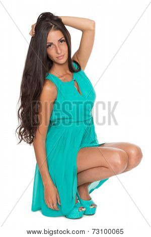 Beautiful girl with long hair sitting on his haunches.