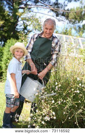 Senior man with grandkid watering plants