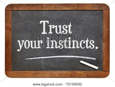 trust your instincts  - advice or motivational reminder  on a vintage slate blackboard