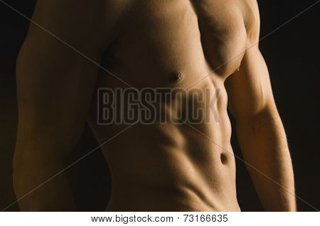 Mixed Race man's bare torso