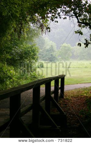 Wooden Bridge And Path