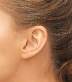 hearing, health, beauty and piercing concept - close up of woman's ear poster