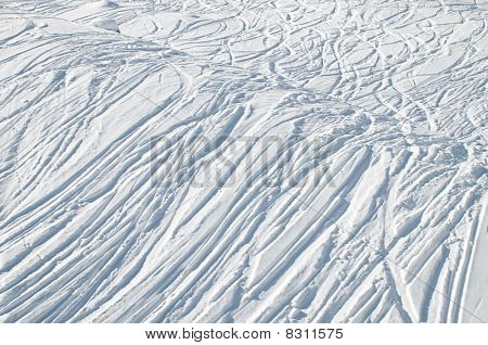 Uncountable Tracks In Snow