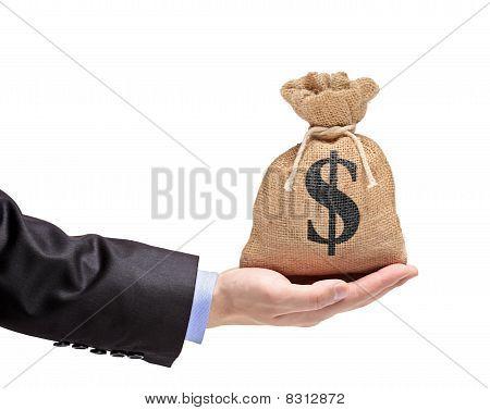 A hand holding a money bag