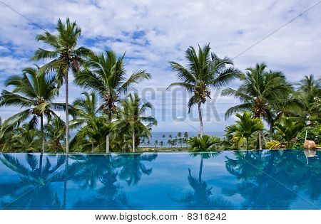 Sea view infinity pool with coconut trees at a resort in Kovalam Kerala India poster