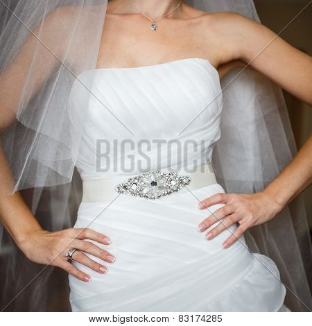 bride in luxury decorated dress with arms akimbo