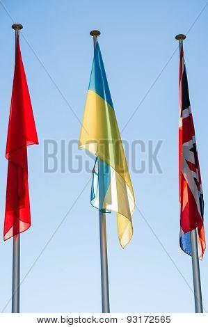 Ukraine Flag - Council 0F Europe