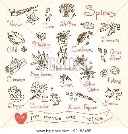 Set drawings of spices for design menus, recipes and packages product