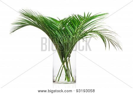 Palm leaves in the vase