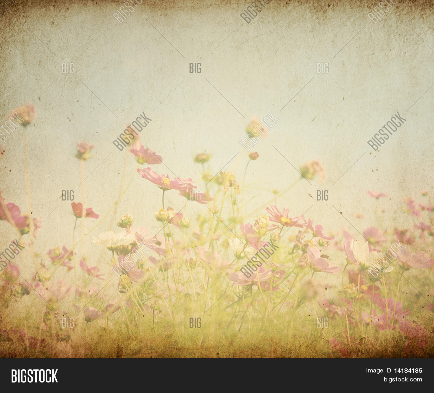 Vintage Flower Paper Image Photo Free Trial Bigstock
