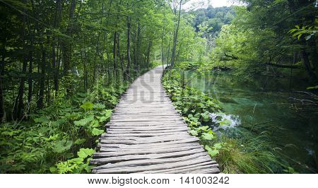 Wooden tourist path in Plitvice lakes national park