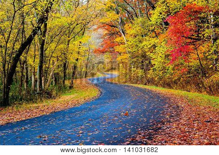 Country Road in October with beautiful fall color