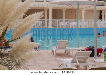 Pool In Hammamet Hotel