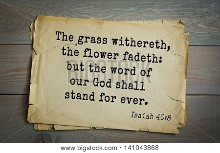 Top 500 Bible verses. The grass withereth, the flower fadeth: but the word of our God shall stand for ever.   Isaiah 40:8