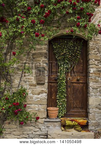 Old wooden and crooked door with red roses pot and rug in Montechiaro d'Acqui Piedmonte Italy