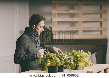 Handsome grower is watering potted plants indoor.