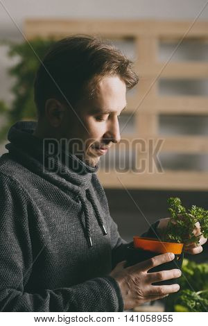 Handsome grower carefully growing and checking plants indoor.