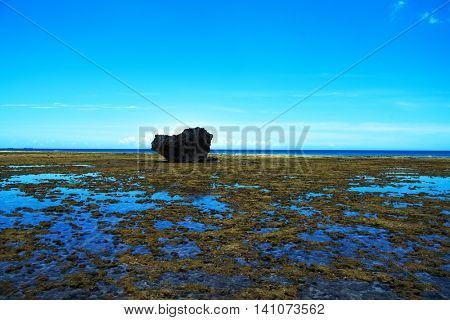 Surreal Coastal scenery of Okinawa, Japan. A single big boulder on an ocean floor showing at low tide or ebb tide. Puddles of water reflecting the blue sky.