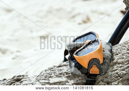 Diving Goggles And Snorkel Gear Wood Tree On White Sand Near Beach