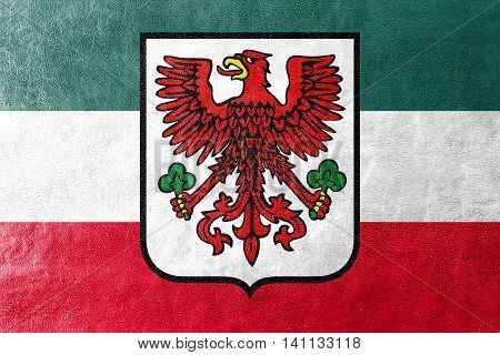 Flag Of Gorzow Wielkopolski With Coat Of Arms, Poland, Painted On Leather Texture