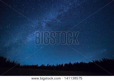 Blue Dark Night Sky With Stars Above Field Of Trees.