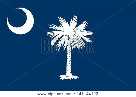 South Carolina State flag authentic color and scale