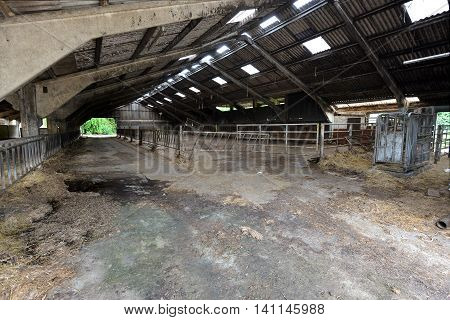 Large empty cattle shed n ex-dairy farm