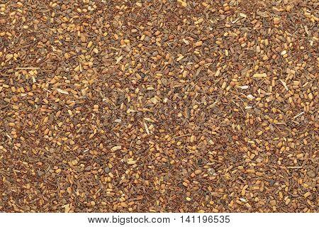 Organic Red Mahogany or Eucalyptus (eucalyptus pellita) seeds. Macro closeup background texture. Top View.